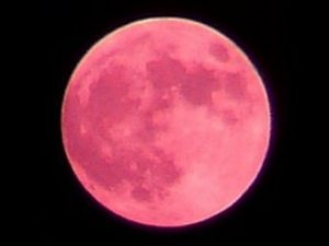 full-strawberry-moon